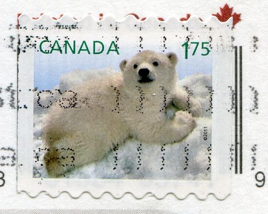Kanada: niedźwiedź polarny (znaczek)